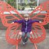 Seeing the butterflies at Meijer Gardens
